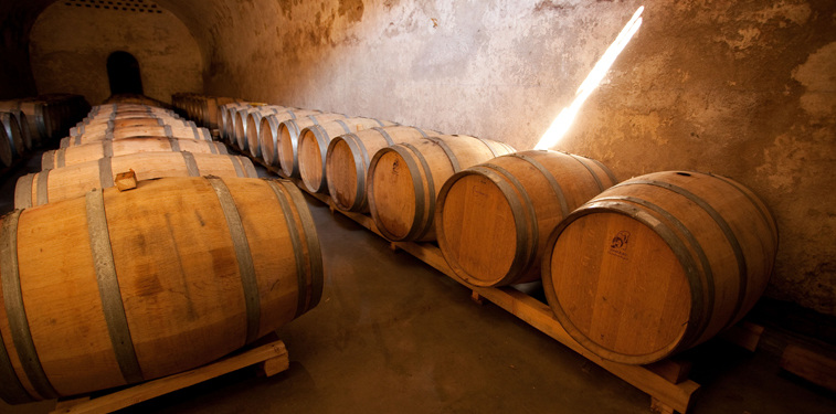 Crama Corcova vin alb ,vin rosu, vin rose, vinuri romanesti, vinuri selecte. Cabernet Sauvignon, Merlot, Pinot Noir, Syrah, Muscat Ottonel, Chardonnay, Sauvignon Blanc - precum și Fetească Neagră