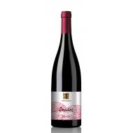 Thesaurus Amadoc Pinot Noir